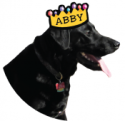 Abby with Abby Crown_no background