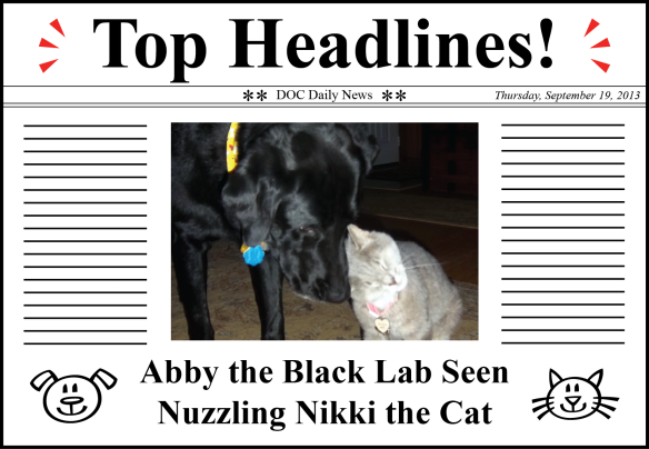 Abby Headlines