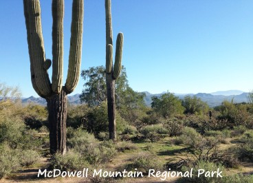McDowell Views_R