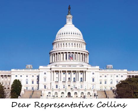 Capitol Building_Collins3