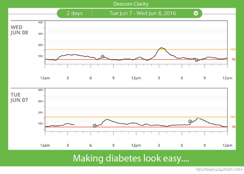 Dexcom Clarity Graphs